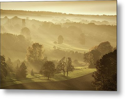 The Downs In Autumn Metal Print
