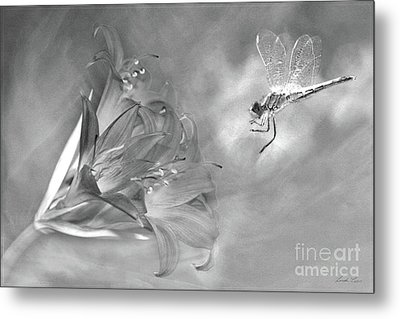 The Dragonfly And The Flower Metal Print by Linda Lees