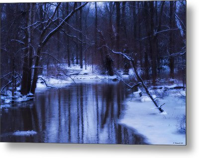 The Dream  Metal Print by Cathy  Beharriell