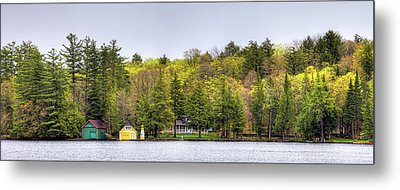 The Early Greens Of Spring Metal Print by David Patterson