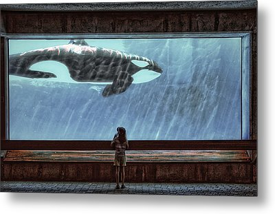 The Encounter Metal Print by Heather  Rivet