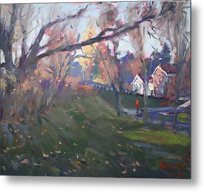 The End Of Autumn Day In Glen Williams On Metal Print by Ylli Haruni