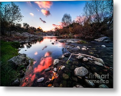 The End Of Autumn Metal Print