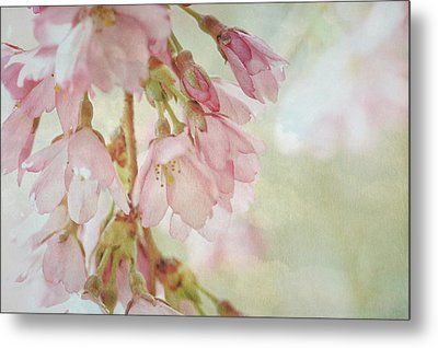 Metal Print featuring the photograph The Essence Of Springtime  by Connie Handscomb