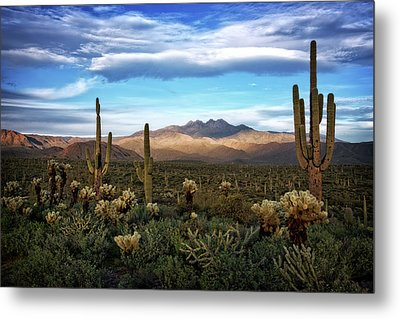 Metal Print featuring the photograph The Evening Glow  by Saija Lehtonen