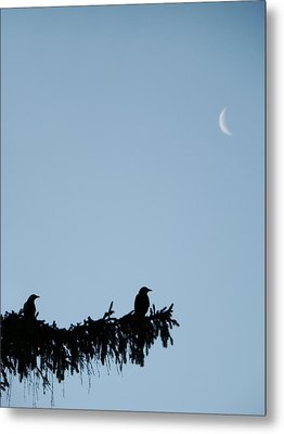 The Evergreen Twins And The Crescent Moon Metal Print by Gothicrow Images