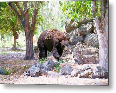 The Exploration Metal Print by Judy Kay