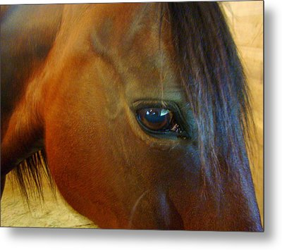 The Eye Of Beauty Metal Print by Lisa Rose Musselwhite