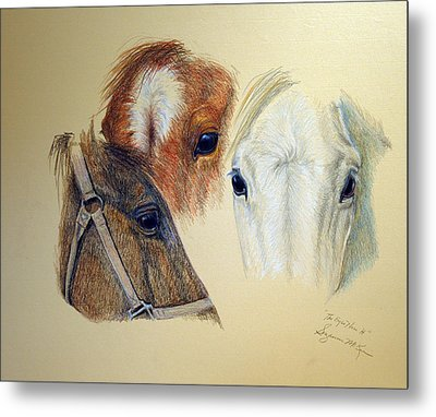 Metal Print featuring the drawing The Eyes Have It by Suzanne McKee