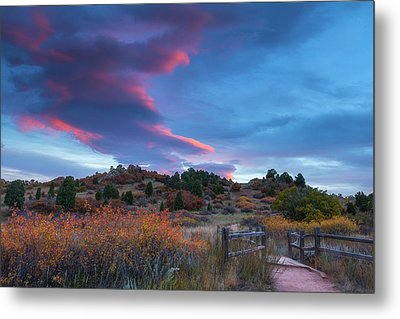 Metal Print featuring the photograph The Fall Meadow by Tim Reaves