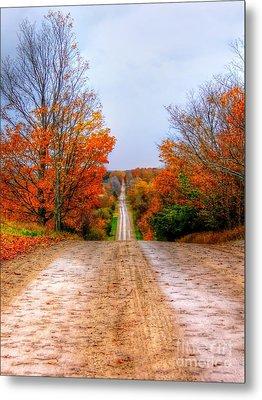 The Fall Road Metal Print by Michael Garyet