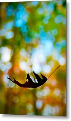 The Fall Metal Print by Ryan Heffron
