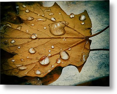 The Fallen Leaf Metal Print