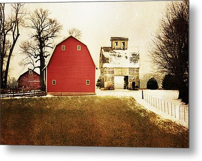 Metal Print featuring the photograph The Favorite by Julie Hamilton