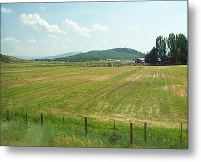 The Fields Of Summer Metal Print by Remegio Onia
