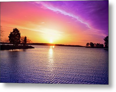 The First Day Of Spring Metal Print by Bill Cannon