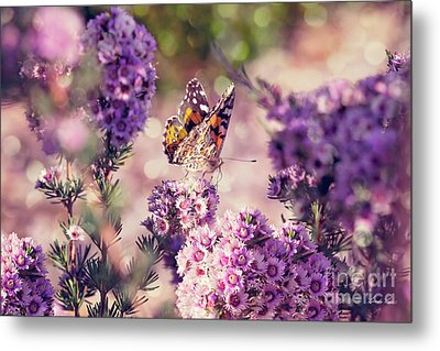 Metal Print featuring the photograph The First Day Of Summer by Linda Lees