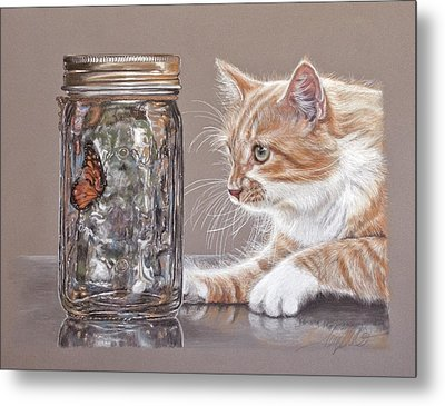 The Fixation Metal Print by Terry Kirkland Cook