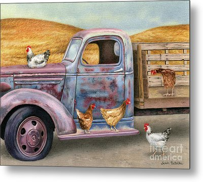 Where The Hens Gather  Metal Print