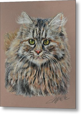 The Fluffy Feline Metal Print by Terry Kirkland Cook