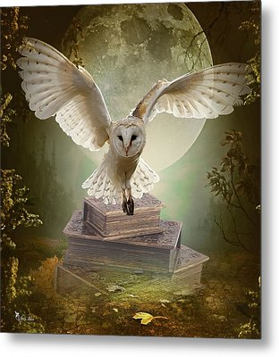 The Flying Wise Metal Print
