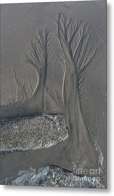 The Forest On The Beach Metal Print by Masako Metz