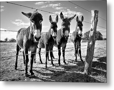 The Four Amigos Metal Print
