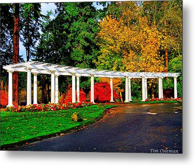 The Garden At Wapato Park Metal Print by Tim Coleman