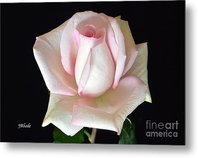 The Gift Metal Print by Jeannie Rhode