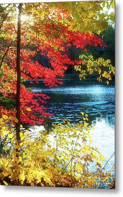 The Glory Of A New England Autumn Metal Print