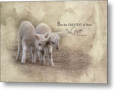 Metal Print featuring the photograph The Greatest Is Love by Robin-Lee Vieira