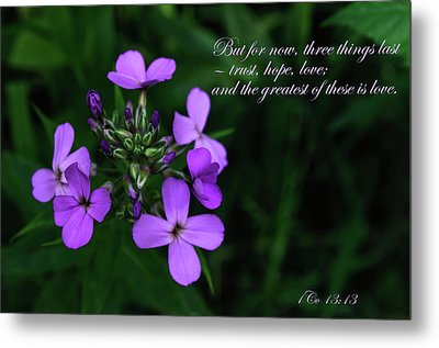 Metal Print featuring the photograph The Greatest Is Love by Tikvah's Hope