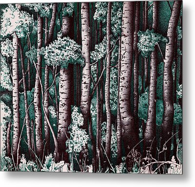 The Grove At Sand Creek Metal Print by Teddy Campagna