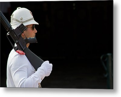 Metal Print featuring the photograph The Guard by Keith Armstrong