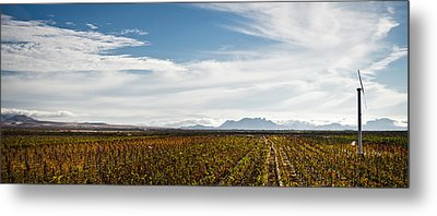The Harvest Is Over Metal Print