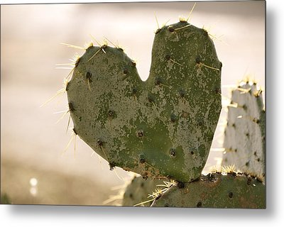 Metal Print featuring the photograph The Heart Of Texas by Debbie Karnes