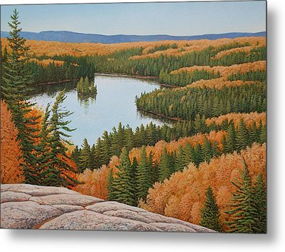 The Height Of Autumn Metal Print