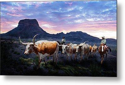Texas Longhorns Blue Metal Print