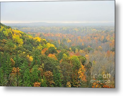 The High Rollaways In The Mist Metal Print by Terri Gostola