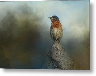 The Highest Point Metal Print