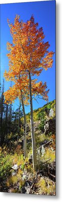 Metal Print featuring the photograph The Hillside - Panorama by Shane Bechler