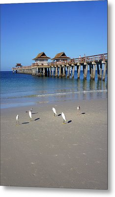 The Historic Naples Pier Metal Print by Robb Stan