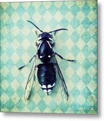 The Hornet Metal Print by Priska Wettstein