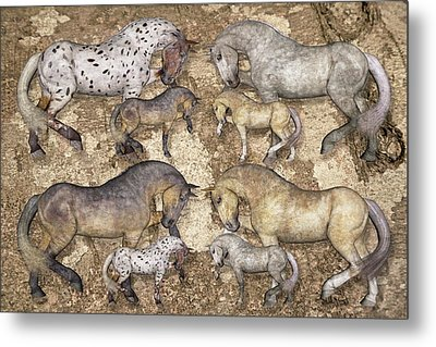 The Horse Collection Metal Print