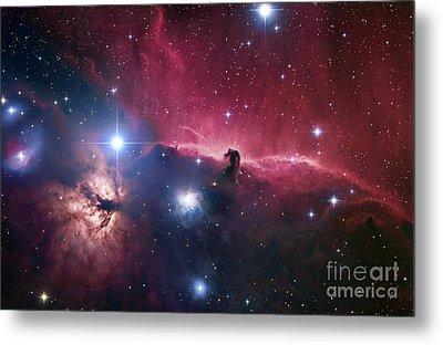 The Horsehead Nebula Metal Print by Robert Gendler