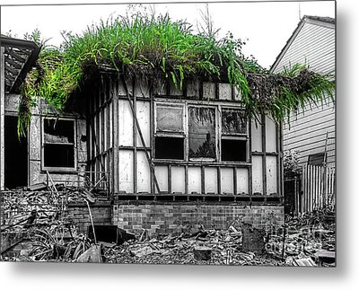 The House Of The Triffids By Kaye Menner Metal Print