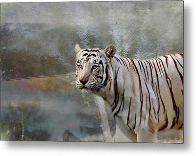 Metal Print featuring the photograph The Hunter by Gary Smith