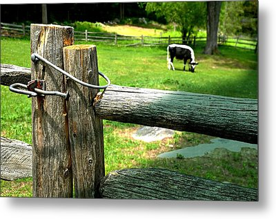 The Iron Latch Metal Print by Diana Angstadt