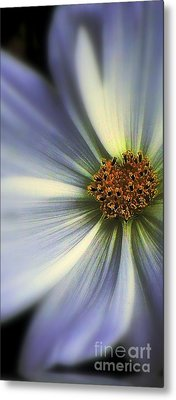 Metal Print featuring the photograph The Jewel by Elfriede Fulda