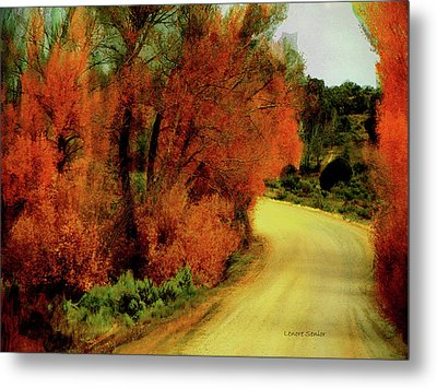 The Journey Home Metal Print